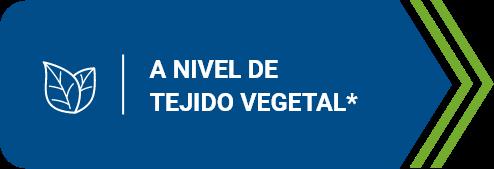 A nivel de tejido vegetal